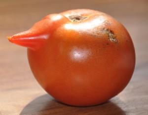 weird tomato